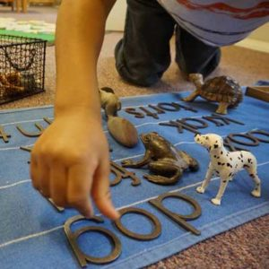 Primary School student works with figurines and letters to learn spelling